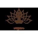 Macérat de Papaye 100 ml